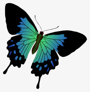 Royalty Free Download With Butterflies Png Jpg Pinterest Butterfly