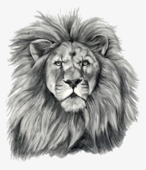 Lion Tattoo Png Images Png Cliparts Free Download On Seekpng