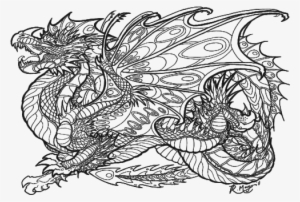 Dragons Coloring Pages Cute Dragon Coloring Pages Realistic Hard Dragon Coloring Pages Png Image Transparent Png Free Download On Seekpng