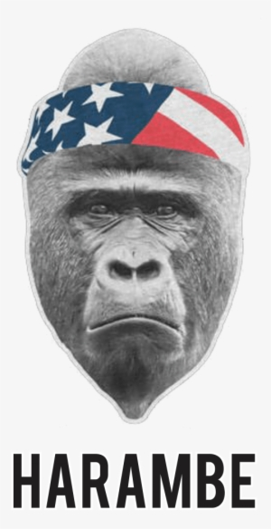 3e483e1d73f Harambe Rest In Peacet-shirt - Harambe Foam Trucker Hat PNG Image ...