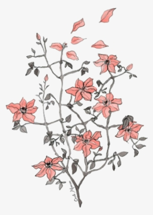 Arabella Flower Drawing Tumblr Drawings Transpa Png