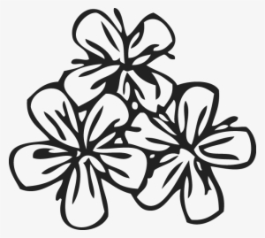 Flower Pattern PNG Images | PNG Cliparts Free Download on SeekPNG