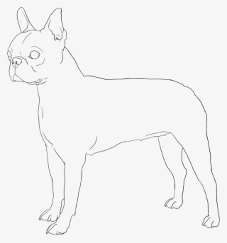 French Bulldog Coloring Page - Crayon Action Coloring Pages | 343x320